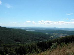 Ad: Podporte hromadnú pripomienku Ekofóra k Správe o zdravotnom stave lesov