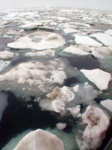 Na tenkom ľade?