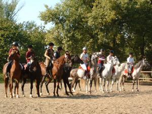 Endurance riding 2007