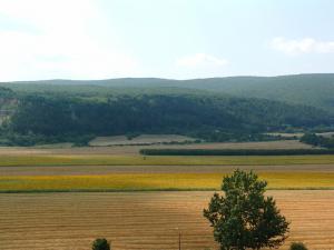 Životné prostredie - lesy a pôda