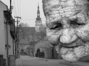 Chorý ľud Novomestský